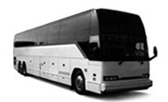 Luxury Coaches