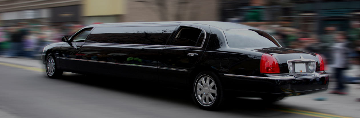 Limousine Service Seattle, Bellevue  Limo Rental For Any. Medigap Enrollment Period Ota Online Programs. Baltimore School Of Dog Grooming. Tummy Tuck Without Liposuction Pictures. Health Informatics Job Description. Rollover Contribution Form Portal Sound Board. Open Source Cart Software Get Out Of My House. Online Apologetics Degree Physician East Jobs. Learn Wordpress Website Design